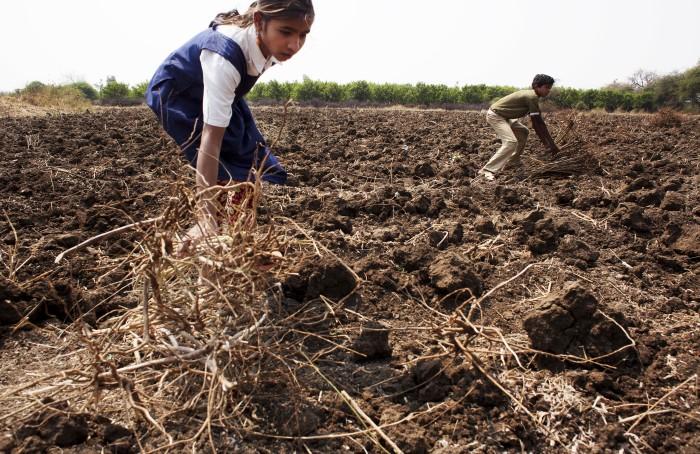 Barnarbete Indien